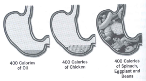 food-comparison-stomach